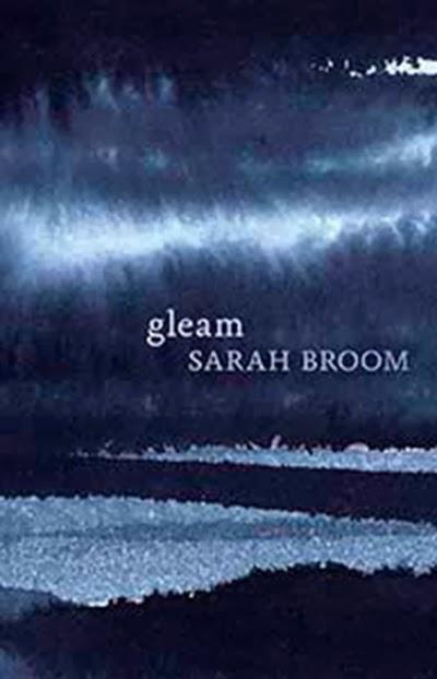 cover image of gleam